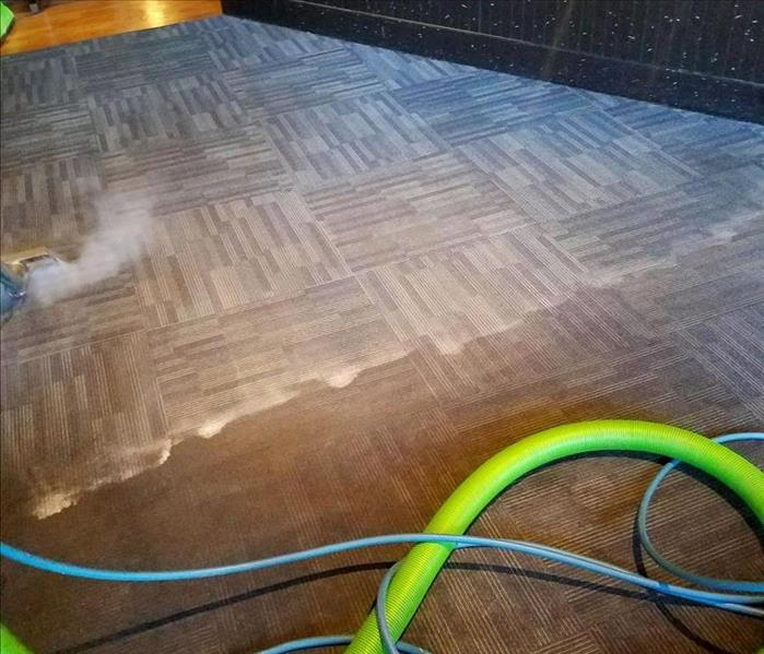 The Drastic Difference Between Clean and Dirty Carpet