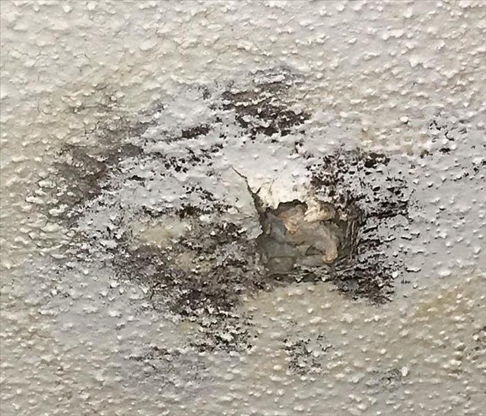 Drywall repair? We can do that!