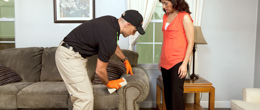 Danville, IL carpet upholstery cleaning