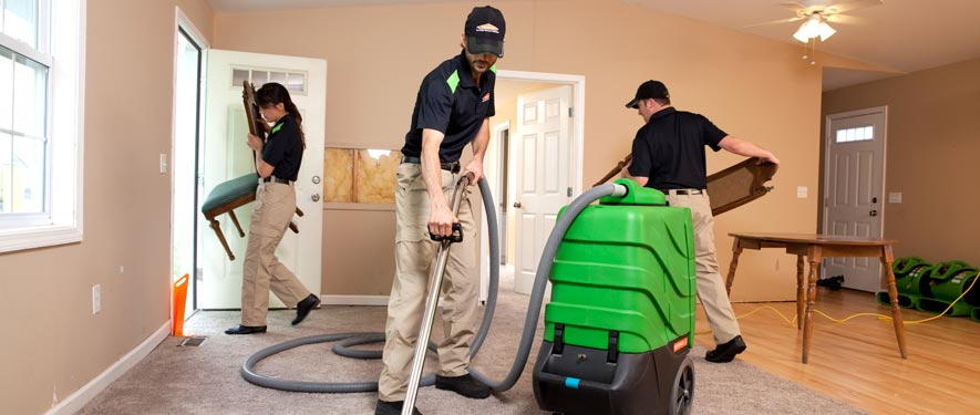 Danville, IL cleaning services